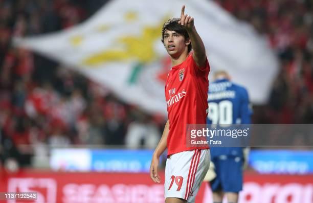 Joao Felix of SL Benfica celebrates after scoring a goal during the Liga NOS match between SL Benfica and Vitoria FC at Estadio da Luz on April 14...