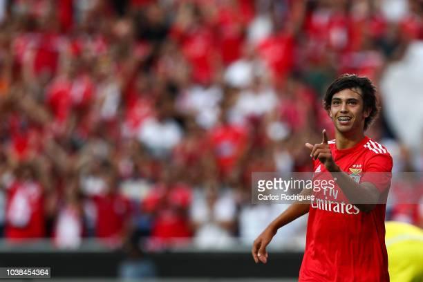 Joao Felix of SL Benfica celebrates scoring SL Benfica goal during the Liga NOS match between SL Benfica and CD Aves at Estadio da Luz on September...
