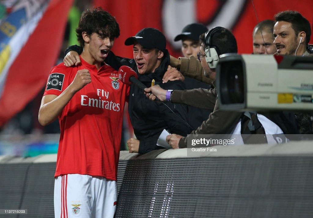 SL Benfica v Vitoria FC - Liga NOS : News Photo