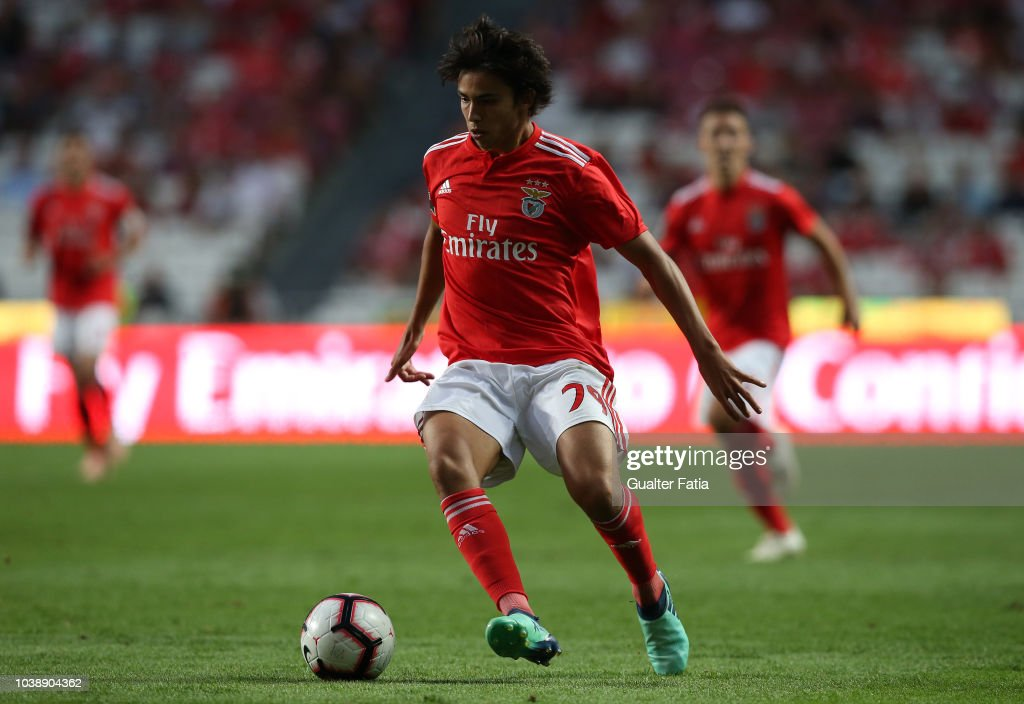 SL Benfica v CD Aves - Liga NOS : News Photo
