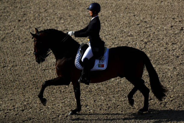 NLD: FEI European Championships In Rotterdam - Day Two