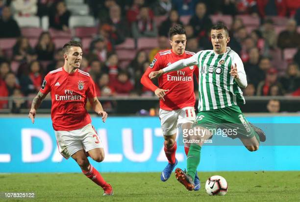Joao Schmidt of Rio Ave FC with Alex Grimaldo of SL Benfica and Franco Cervi of SL Benfica in action during the Liga NOS match between SL Benfica and...