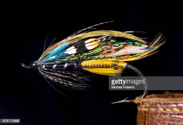 jock scott salmon fly on black background - fishing hook stock pictures, royalty-free photos & images