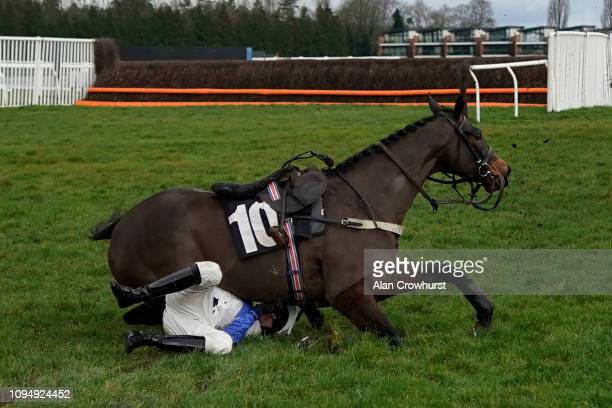 Jockey Adam Wedge finds himself under Navajo War Dance after falling at the last in The EBM Handicap Hurdle at Newbury Racecourse on January 16 2019...