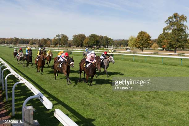 Jockey Alexis Badel riding Santorina wins the Race 5 L'Artois Handicap at Compiegne racecourse on October 8, 2018 in Compiegne, France.