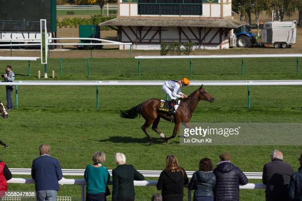 Jockey Alexis Pouchin riding Alexis Pouchin wins the Race 3 Puits Du Roy Maiden at Compiegne racecourse on October 8 2018 in Compiegne France