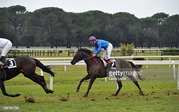 Jockey and owner Federico De Paola rides his blind racehorse Laghat at Ippodromo San Rossore on January 20 2013 near Pisa Italy Laghat is a...