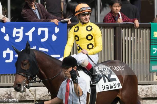 Jockey Andrea Atzeni riding Giorgio during the Race 6 at Tokyo Racecourse on November 7 2015 in Tokyo Japan