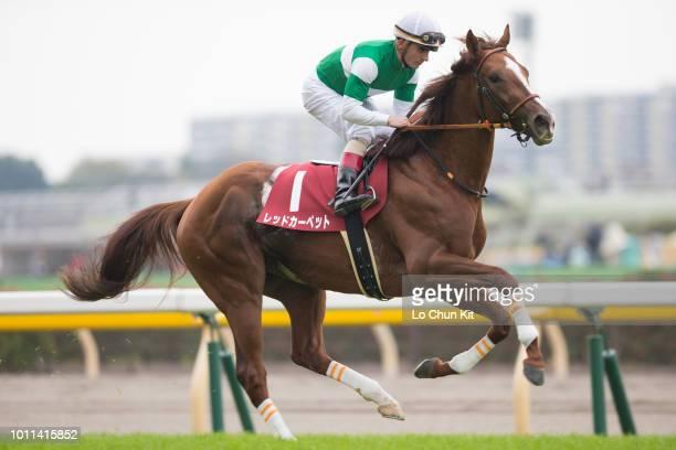 Jockey Andrea Atzeni riding Red Carpet during the Race 11 Keio Hai Nisai Stakes at Tokyo Racecourse on November 7 2015 in Tokyo Japan