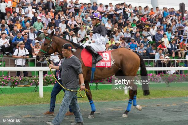 Jockey Antonio Da Silva riding Super Winner at the paddock during the Race 8 The Keeneland Korea Sprint at Seoul Racecourse on September 11 2016 in...