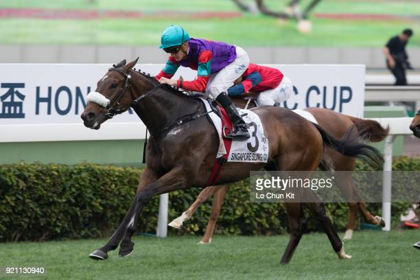 Jockey Chad Schofield riding Singapore Sling wins Race 9 The Hong Kong Classic Cup at Sha Tin racecourse on February 18 2018 in Hong Kong Hong Kong...