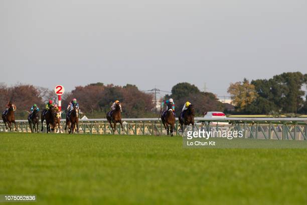 Jockey Christophe Lemaire riding Almond Eye wins the Japan Cup at Tokyo Racecourse on November 25, 2018. Almond Eye's Japan Cup run of 2:20.6 is a...