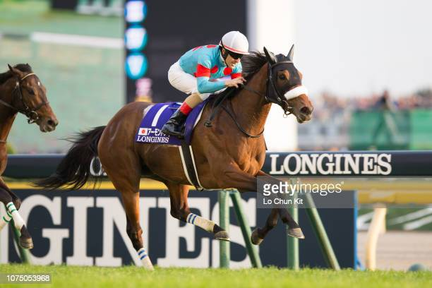 Jockey Christophe Lemaire riding Almond Eye wins the Japan Cup at Tokyo Racecourse on November 25 2018 Almond Eye's Japan Cup run of 2206 is a world...