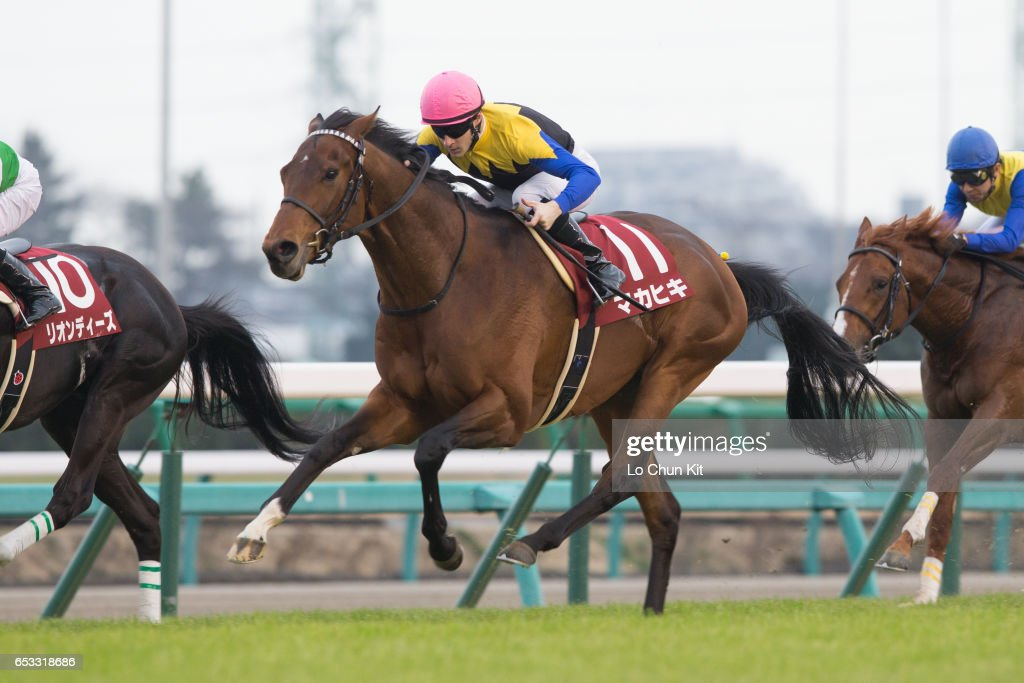 Jockey Christophe Lemaire riding Makahiki wins the Race 11 Yayoi Sho - Japanese 2000 Guineas Trial (G2 2000m) at Nakayama Racecourse on March 6, 2016 in Funabashi, Chiba, Japan.