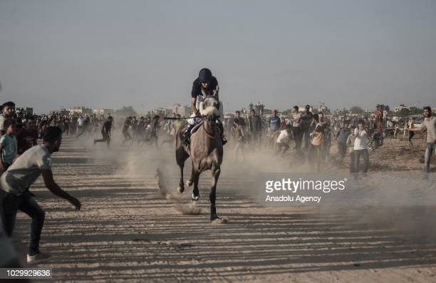 Jockey competes in a horse race at the airfield of Yasser Arafat International Airport in Rafah, Gaza on September 09, 2018. Gaza International...