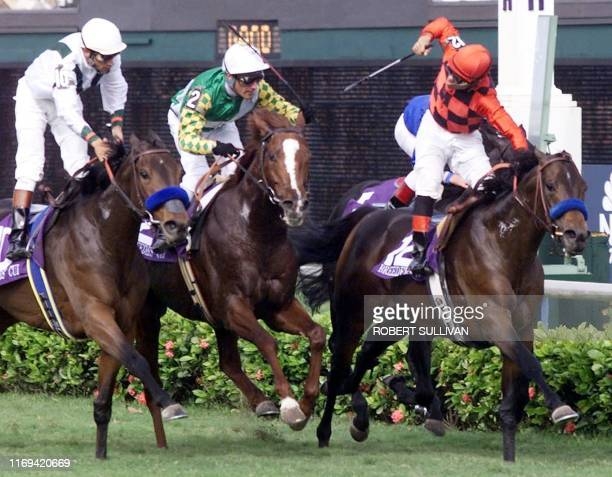 Jockey Corey Nakatani celebrates on French horse Silic after crossing the finish line to win the Breeders' Cup Mile 06 November at Gulfstream Park in...