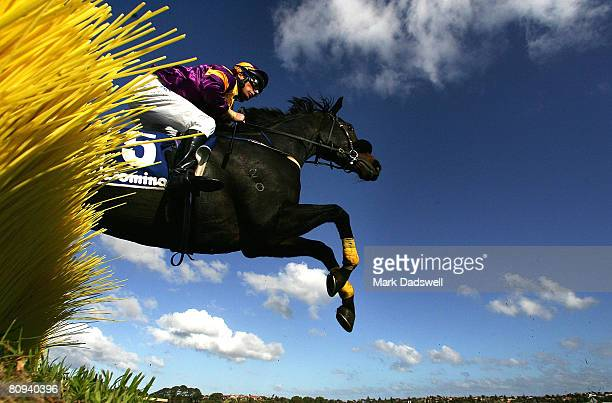 Jockey Craig Durden riding Ginolad clears the second hurdle at Tozer Road on his way to winning the Dominant Grand Annual Steeplechase during day...