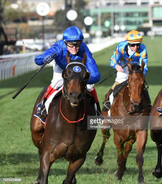 Jockey Craig Williams riding Encryption winning Race 8 Danehill Stakes during Melbourne racing at Flemington Racecourse on September 15 2018 in...