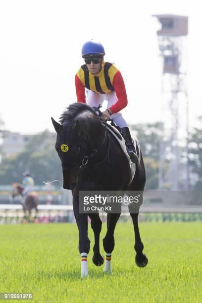 Jockey Cristian Demuro riding Logotype during the Tokyo Yushun at Tokyo Racecourse on May 26 2013 in Tokyo Japan Tokyo Yushun Japanese Derby is the...