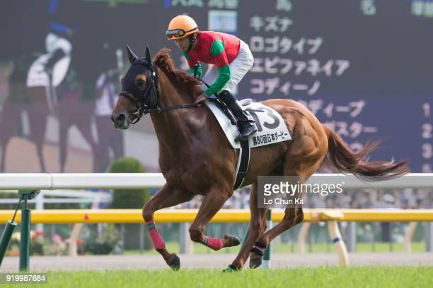 Jockey Daichi Shibata riding Meiner Ho O during the Tokyo Yushun at Tokyo Racecourse on May 26 2013 in Tokyo Japan Tokyo Yushun Japanese Derby is the...