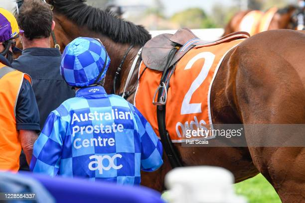 Jockey Damien Oliver wearing the Australian Prostate Centre silks before the Longboard Accountants for Mirabel Hcp at Caulfield Racecourse on...