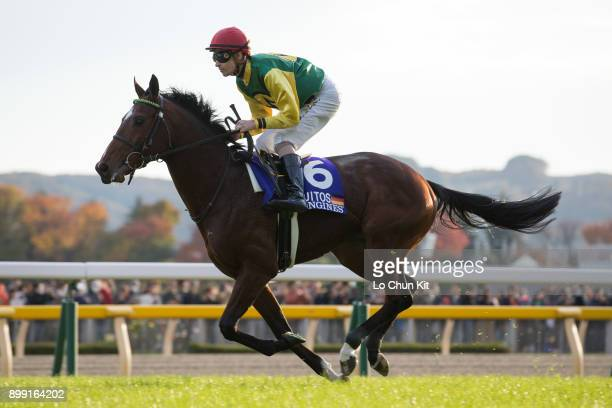 Jockey Daniele Porcu riding Iquitos during the Japan Cup at Tokyo Racecourse on November 26 2017 in Tokyo Japan