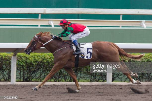 KONG SEPTEMBER Jockey Douglas Whyte riding Just Not Listening wins Race 1 Boston Handicap at Sha Tin racecourse on September 22 2018 in Hong Kong