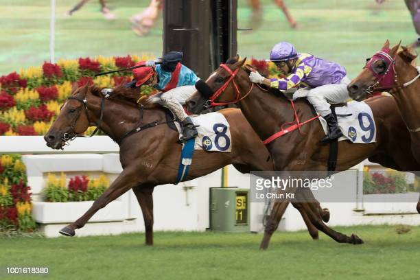 Jockey Douglas Whyte riding Star Shine wins Race 11 The Hong Kong Racehorse Owners Association Trophy at Sha Tin racecourse during Season Finale race...