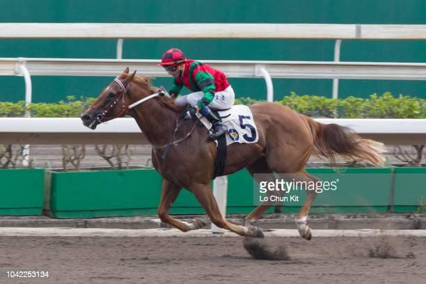 KONG SEPTEMBER Jockey Dylan Mo Hintung riding Regency Bo Bo wins Race 10 Washington DC Handicap at Sha Tin racecourse on September 22 2018 in Hong...