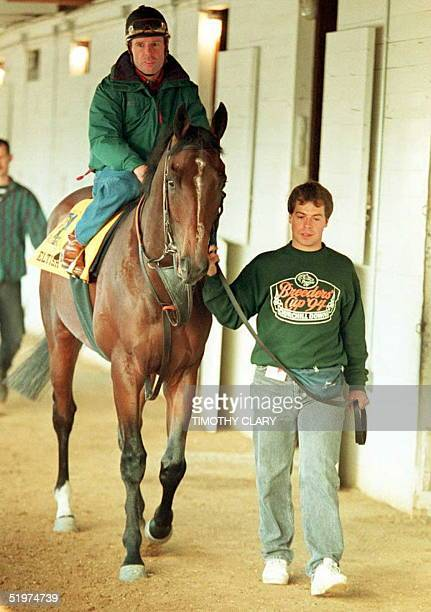 Jockey Eddie Delahoussaye sits atop British Kentucky Derby hopeful Eltish as groom Paul Morgan leads as they hot walk before morning workouts 05 May...