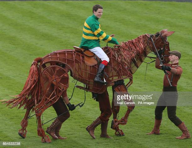 Jockey Fran Berry rides Joey the star of War horse during Big Bad Bob Gladness Stakes/War Horse Race Day at The Curragh Racecourse Co Kildare Ireland
