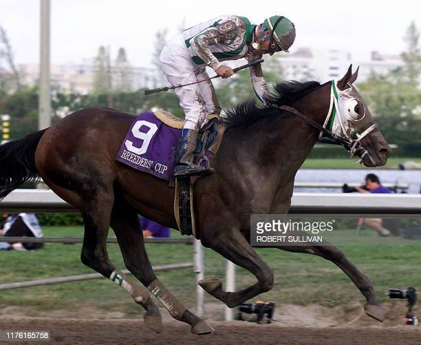 Jockey Gary Stevens pilots Anees across the finish line to win the Breeders' Cup Juvenile 06 November 1999 at Gulfstream Park in Hallandale FL Chief...