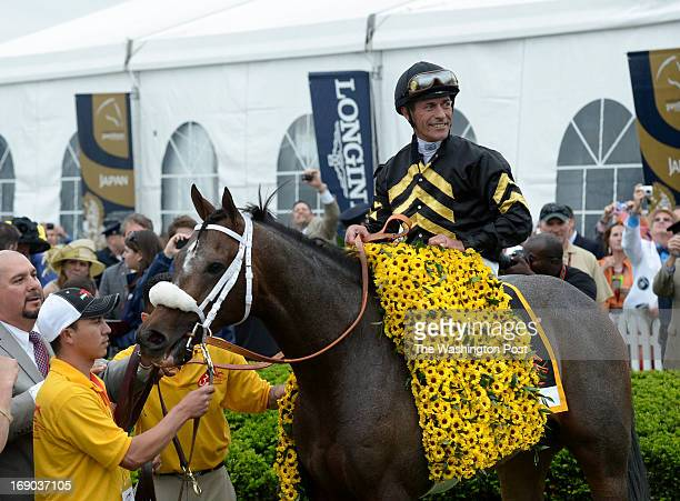 Jockey Gary Stevens poses on Oxbow in the Winner's Circle after winning the 138th Running of the Preakness Stakes at Pimlico Race Course in Baltimore...