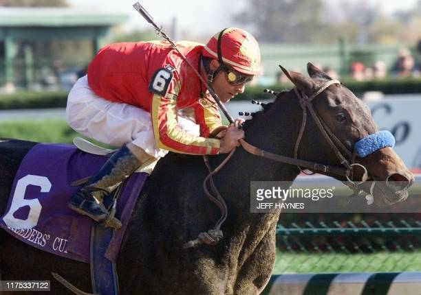 Jockey Gary Stevens takes Silverbulletday to victory 07 November during the Breeders' Cup Juvenile Fillies race at Churchill Downs in Louisville KY...