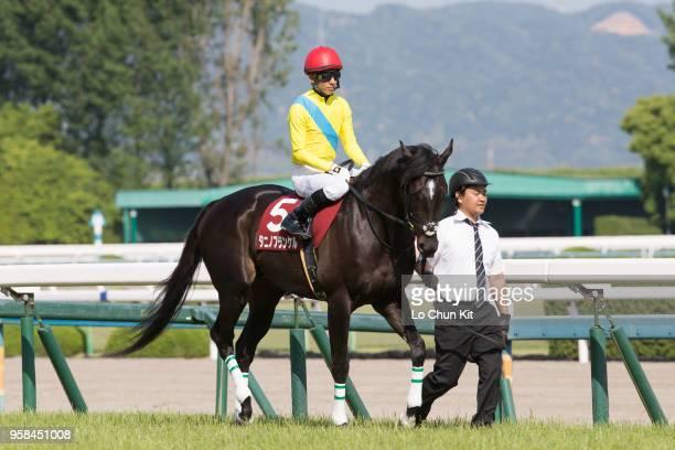 Jockey Hideaki Miyuki riding Tanino Frankel during the Race 11 Kyoto Shimbun Hai at Kyoto Racecourse on May 5 2018 in Kyoto Japan Tanino Frankel is a...