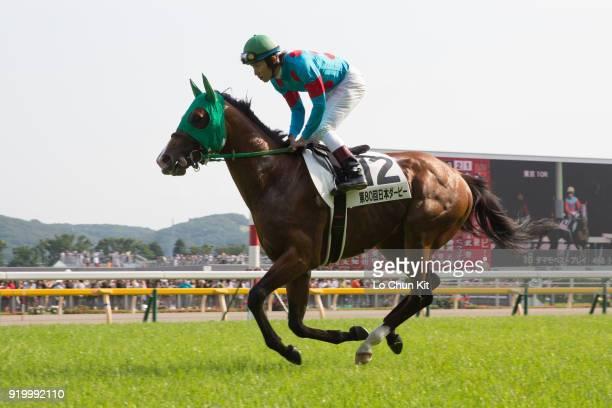 Jockey Hironobu Tanabe riding Samson's Pride during the Tokyo Yushun at Tokyo Racecourse on May 26 2013 in Tokyo Japan Tokyo Yushun Japanese Derby is...