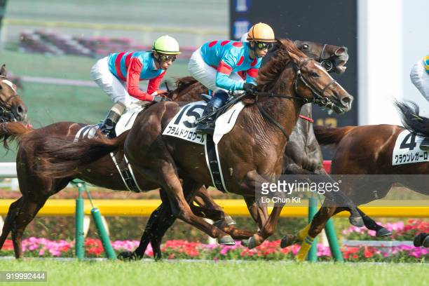 Jockey Hiroshi Kitamura riding Flamme de Gloire during the Tokyo Yushun at Tokyo Racecourse on May 26 2013 in Tokyo Japan Tokyo Yushun Japanese Derby...