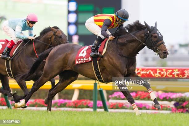Jockey Hiroyuki Uchida riding Mousquetaire wins the Meguro Kinen at Tokyo Racecourse on May 26 2013