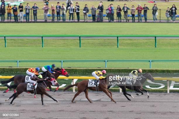Jockey Hiroyuki Uchida riding Sano Ichi wins the Race 12 at Tokyo Racecourse on October 11 2015 in Tokyo Japan