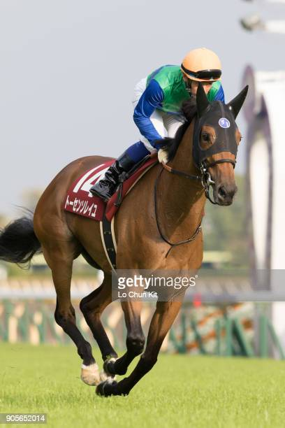 Jockey Hiroyuki Uchida riding Tosen Soleil during the Fuchu Himba Stakes at Tokyo Racecourse on October 17 2015 in Tokyo Japan
