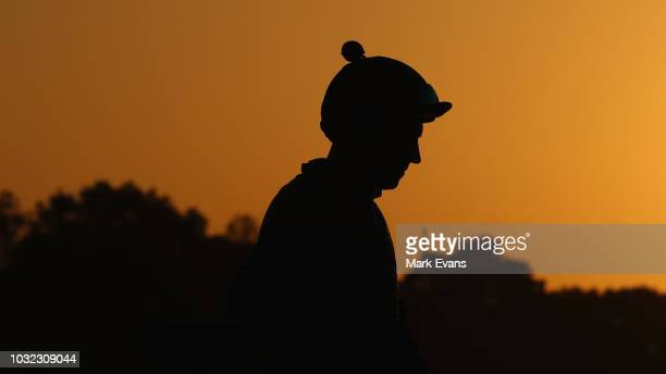 Jockey Hugh Bowman looks on after riding Winx during a trackwork session at Rosehill Gardens on September 13 2018 in Sydney Australia