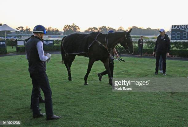 Jockey Hugh Bowman looks on as Winx is paraded in the mounting yard after competing during a trackwork session at Rosehill Gardens on April 12 2018...