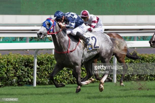 Jockey James McDonald riding Lockheed runs 2nd during Race 7 California Memory Handicap at Sha Tin Racecourse on MAY 26 2019 in Hong Kong