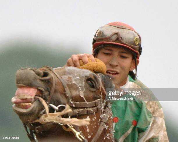 Afleet Alex Pictures and Photos | Getty Images
