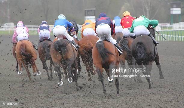 Jockey Jim Crowley Steve Drowne Tom Queally George Baker William Carson Richard Thomas Martin Dwyer Carson Hayley Turner Jim Crowley and Chris Catlin...