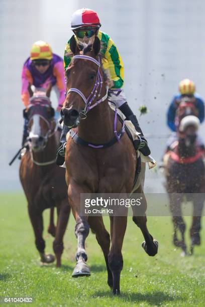 Jockey Joao Moreira riding Bravo Watchman wins Race 2 Cineraria Handicap at Sha Tin racecourse on February 5 2017 in Hong Kong Hong Kong