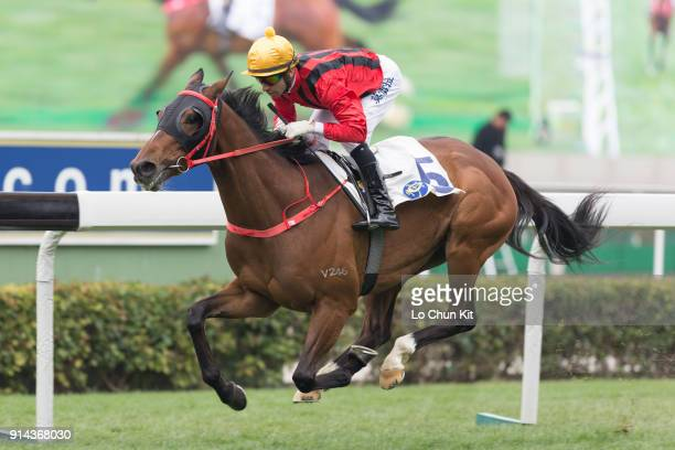 Jockey Joao Moreira riding Dinozzo wins Race 3 The Centenary Vase at Sha Tin racecourse on February 4 2018 in Hong Kong Hong Kong