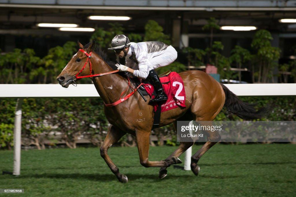 Horse Racing in Hong Kong - Happy Valley Racecourse : News Photo