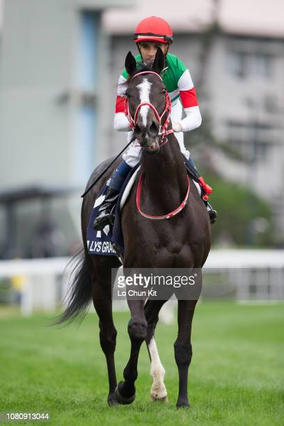 Jockey Joao Moreira riding Lys Gracieux runs 2nd during Race 4 Longines Hong Kong Vase at Sha Tin racecourse during the LONGINES Hong Kong...