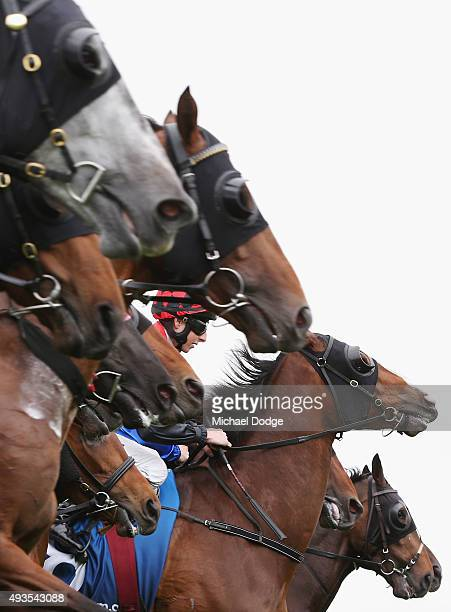 Jockey Jye McNeil guides Flying Geepee from the barrier in race 6 The Elmsley Lodge Classic during Geelong Cup Day at Geelong Racecourse on October...